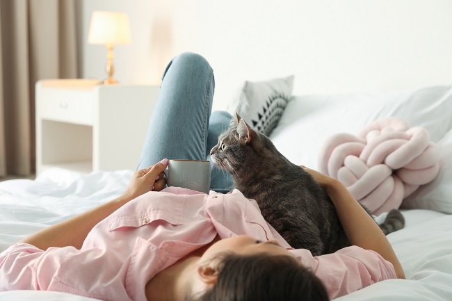 """3 """"Paw-some"""" Cleaning Tips for Pet Owners"""