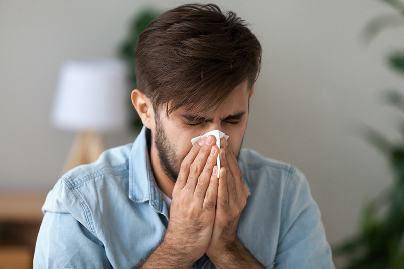 Cleaning Services Combat Allergies